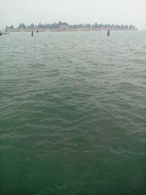 Venice water picture