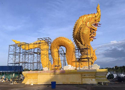 Large dragon, Trat