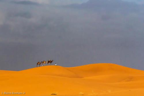 Dunes, Morocco, Sahara