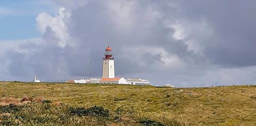 Berlinga Archipelago, Portugal