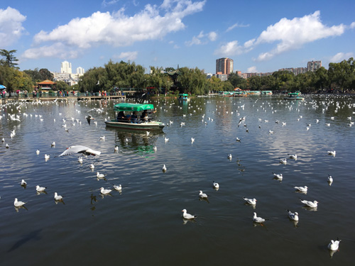 Kunming Green Lake Park